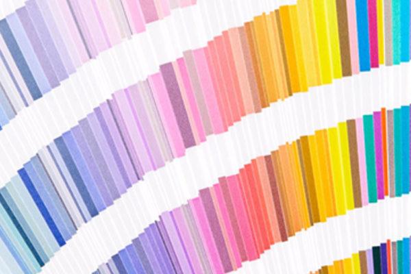 expertiseVous aidez à faire le choix entre le blanc et la couleur